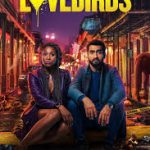 The Lovebirds (2020) (Movie)