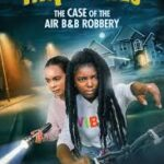 Hidden Orchard Mysteries: The Case of the Air B and B Robbery (2020)